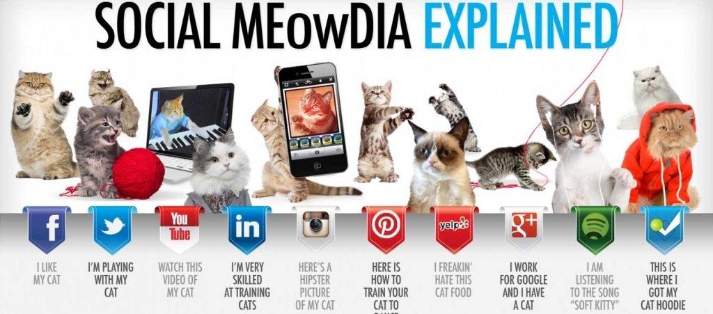 social-explain-1024x451[1]